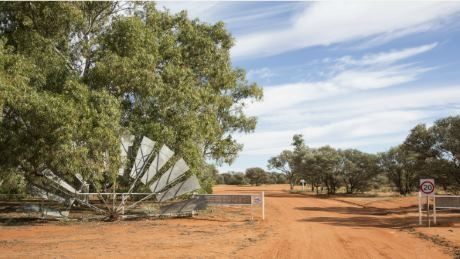 """Cameco получило экологическое разрешение на проект """"Иллири"""" в Западной Австралии"""