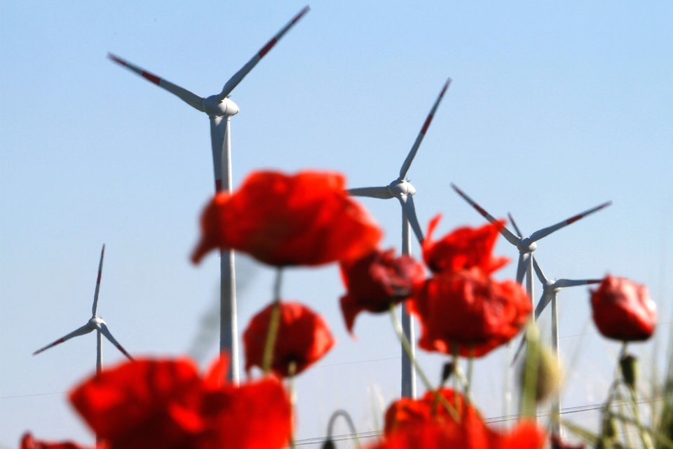 """""""Энергетическая революция"""" в Германии создает проблемы ее соседям"""