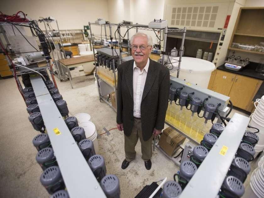 """В Канаде разработан проект извлечения редкоземельных металлов из """"хвостов"""" урановых производств"""