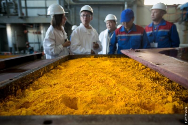 Агентство по ядерной энергии ОЭСР выпустило обзор мирового рынка урана